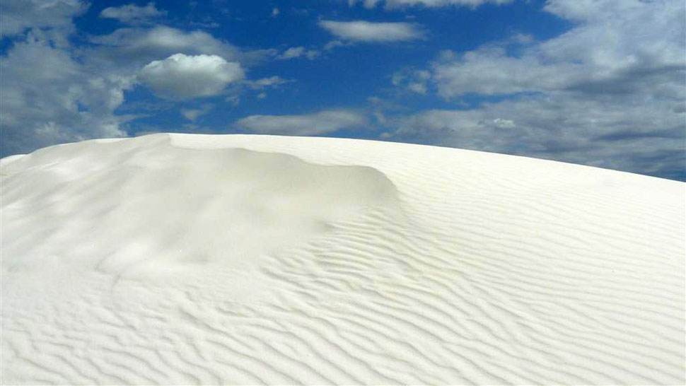 White Sands New Mexico / © Rainer and Susanne Grun