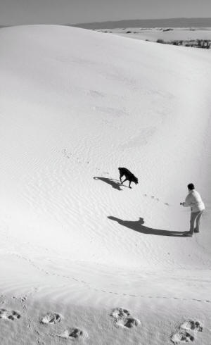 Playing with Dog, White Sands National Monument